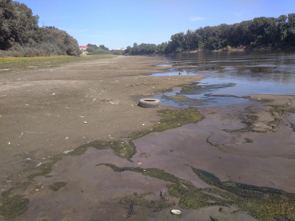 Название: Берег реки Днестр.jpg Просмотров: 26  Размер: 228.3 Кб