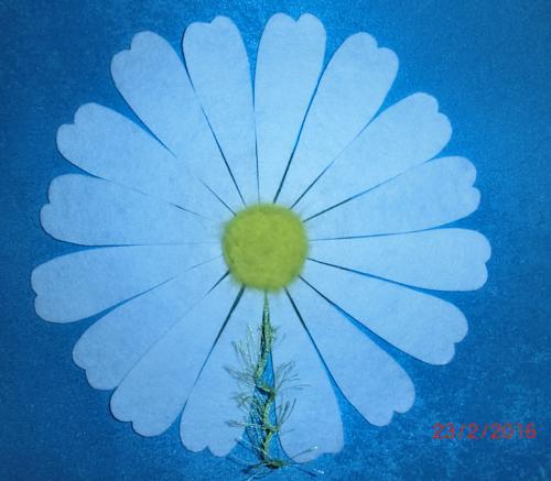 Нажмите на изображение для увеличения Название: Декоративная ромашка - фелтинг.jpg Просмотров: 138 Размер:76.6 Кб ID:1107